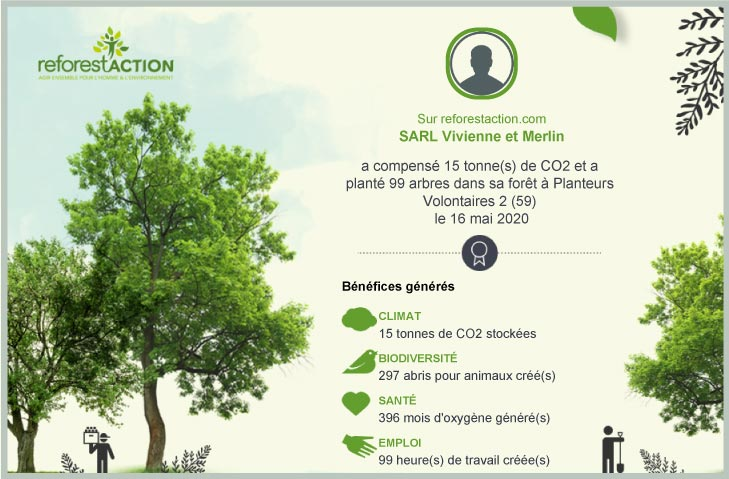 Compensation carbone 2019